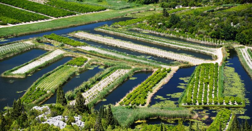 Sita przemysłowe w rolnictwie i akwakulturze